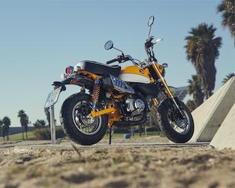 honda monkey 125 motosnet